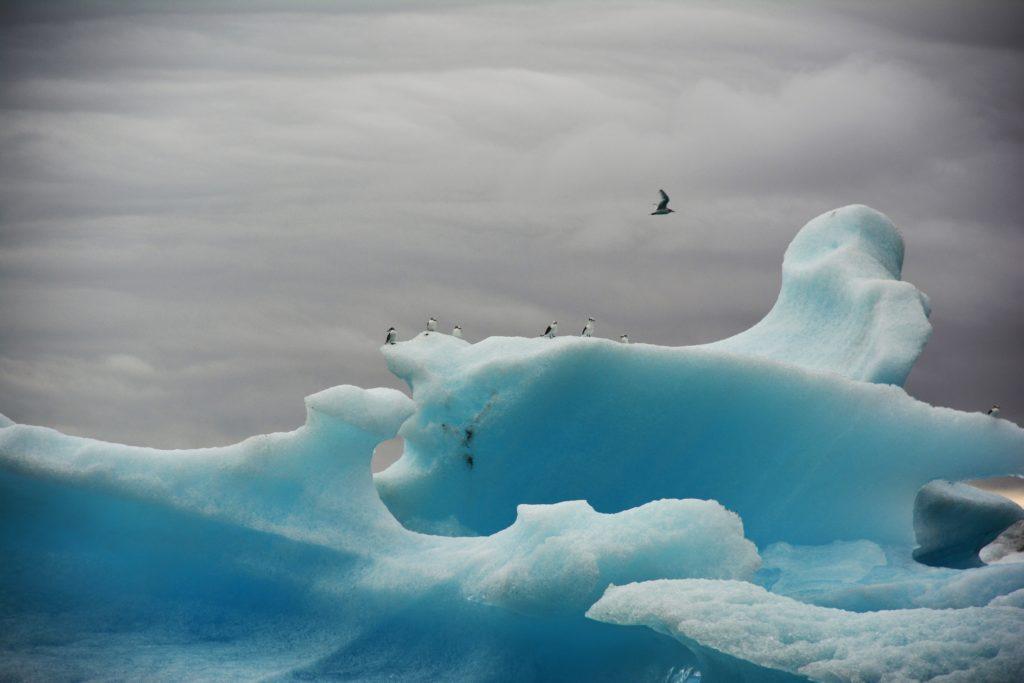Laguna glaciale Jökulsárlón, ghiacciaio Vatnajökull