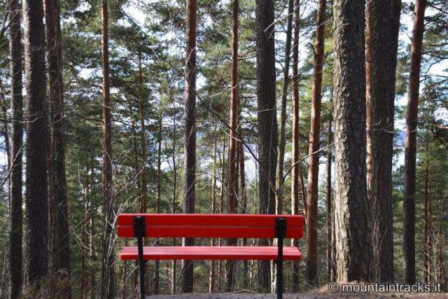 Trip in Estonia e Finlandia
