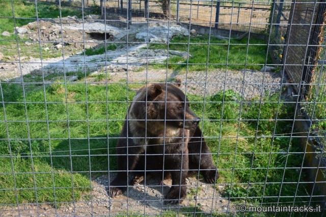 British Columbia Wildlife Park