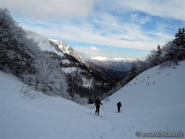 snow, skialper