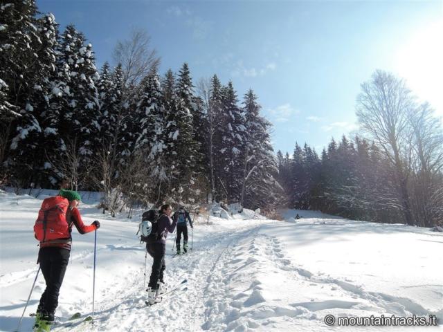 abeti snow