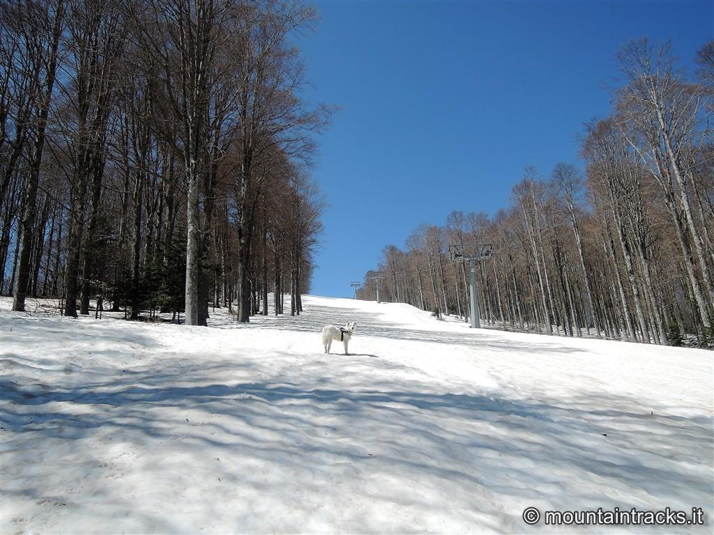 abetone spring skialp